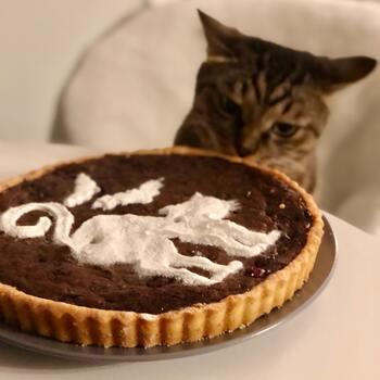 """食べるのがもったいない!""""ネコ""""モチーフの可愛すぎるスイーツレシピ"""