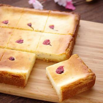 ホットケーキミックスでつくる本格的なチーズケーキ。桜の塩漬けの塩味がクセになる美味しさです。スクエアの型を使えば、小分けにカットもラクチンになりますよ。