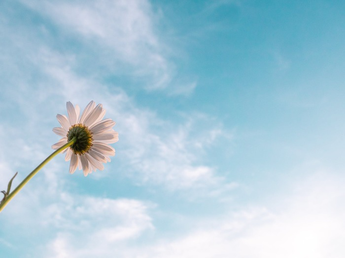 生きる意味に迷ったら。幸せであるためのシンプルな「人生哲学」
