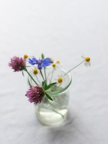 シロツメクサも春の代名詞。たくさん摘んで花冠や指輪をつくった思い出はありませんか? 数種の野の花とガラス瓶に挿すだけで、素敵なインテリアになりますね。