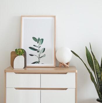 おしゃれでボタニカルな部屋に。シンプルな植物のアートを飾ろう