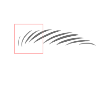 眉毛のプロポーションを参考に、眉山は眉を3つに分けた時、眉頭から2/3の位置に来るようにします。
