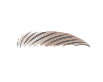 眉頭はあまり濃くならないように、眉山に向かって徐々にグラデーションになるように丁寧に描いていきます。