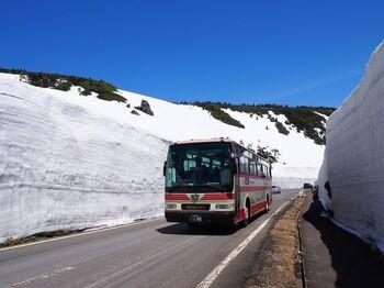 今年の開通は、4月15日午前10時の予定です。写真のように、バスの背よりも高い雪の壁を見ることができますよ。例年ゴールデンウィーク過ぎまで見られるそうです。ブナの樹海が広がる、源太岩展望所からの大パノラマが必見なので、ぜひ立ち寄ってみてくださいね。