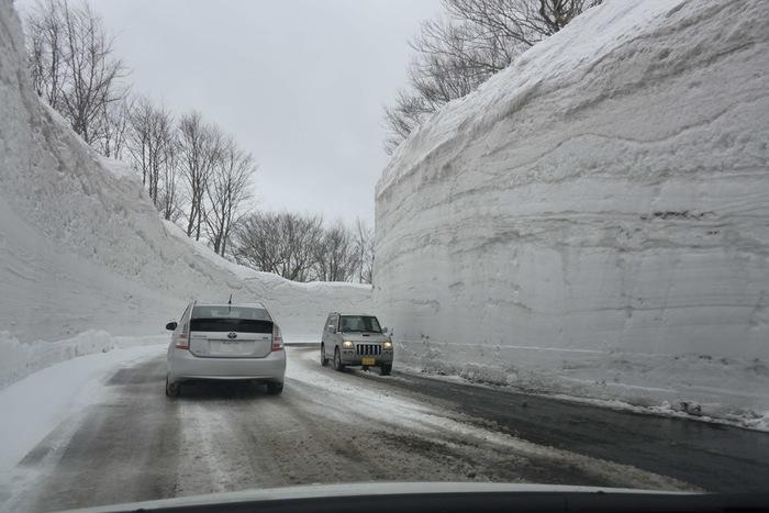 開通は例年4月1日で、直前の3月30、31日には毎年歩きながら雪の回廊を楽しむイベントが開催されています。(2021年は残念ながら中止が決定しています。)長さは8kmほどと短いですが、雪壁の高さはまさに圧巻。真っ白な雪の道をぜひその目で確かめてみて。