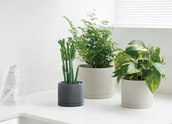 シンプルなデザインと質感の鉢植えは、どんなインテリア空間にも馴染むのが魅力です。  こちらのプラントポットは2色展開で3サイズ揃っていて、大きさや色違いでいくつか並べて飾ってもおしゃれ見えします。