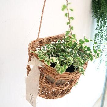 アンティーク感のあるバスケットに、フェイクグリーンやドライフラワーを入れれば、そのまま飾れるグリーンインテリアの完成です。こちらのカゴは吊り下げることもできるので、場所に合わせてさまざまな飾り方を楽しめますよ。
