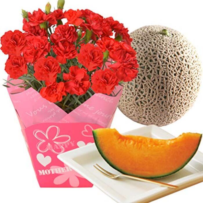 花のギフト社 母の日メロンとカーネーション  鉢花