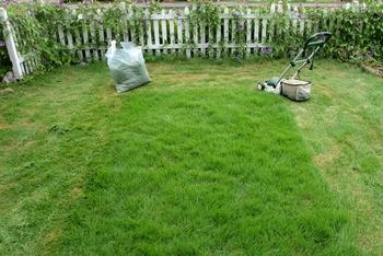 『人工芝』は庭やベランダ、室内にもおすすめ。人工芝はじめてDIY講座