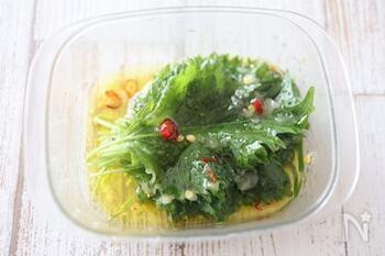 塩、おろしにんにく、鷹の爪、オリーブオイルを使って、ガーリックオイル漬けを作ります。大葉を1枚ずつ浸して重ね、冷蔵保存します◎