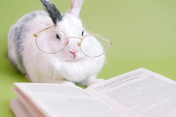 作家の日常や生き方をヒントに。悩んだ日に読みたい小説とエッセイ