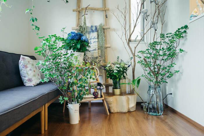 流木のラダーラックを壁にさりげなく…。ラックにはエアープランツと一緒に普段使っているというショールを掛けて!植物だけでなく、ファッションのアイテムをさりげなくプラスするだけで、お部屋の中に季節感も取り入れることが出来ます。ラダーラックは存在感がある分、お部屋の雰囲気作りに大活躍してくれそうですね。