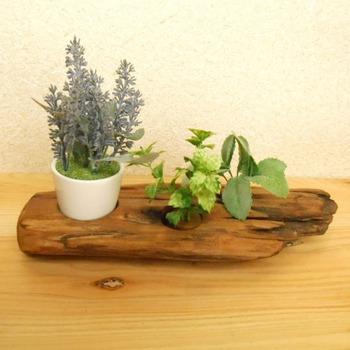 流木に穴が開いていて、小さめの植物が置ける平置きグリーンスタンド。流木×グリーンの組み合わせがとても癒されますね♪玄関やトイレなどに飾るのもおすすめです。