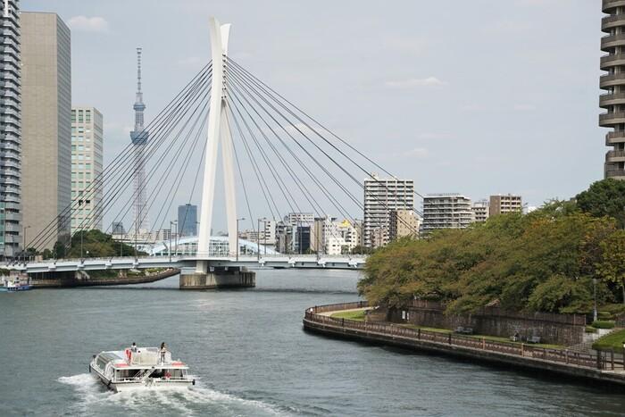 """中央区にある「中央大橋」は目を惹くデザインが特徴です。隅田川とセーヌ川が友好河川であることから、フランスのデザイン会社が設計に携わりました。吊り橋の欄干や塔に、日本の""""兜""""をモチーフにした意匠が施されています。"""