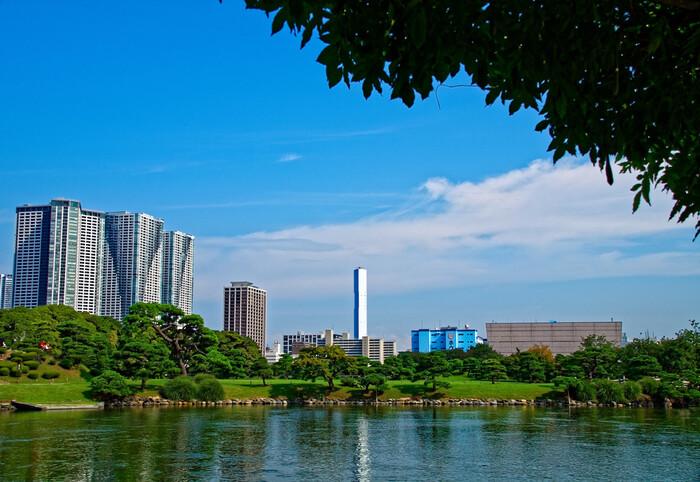 海と庭園が近いことから、海水と淡水が混じり合う池があるのが特徴です。「潮入の池」は東京湾の水位の上下によって水門を開け閉めし、池の水量を調節しています。池にはハゼやウナギなどの海水魚が生息しているのも珍しいですよね。
