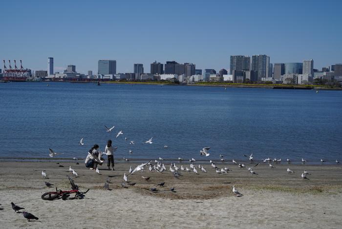 砂浜で水遊びをしたり日光浴をしたりと、思い思いの時間を過ごすことができるビーチも人気。釣りスポットやランニングコースもあるので、都心でアウトドアを満喫したい方にぴったりですよ。
