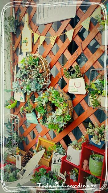 格子状のラティスは日当たりを確保できるところも魅力です。プランターを引っかけたりガーランドで飾り付けをしたりと、オリジナルのディスプレイを楽しむことができるため、おしゃれで心地良い空間作りをしたい時にぴったりです。