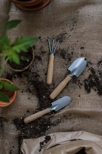 初めてでも簡単*室内やベランダでできる「キッチンハーブ」の育て方・レシピ