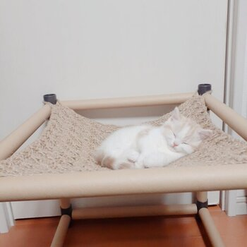 僕たちココが大好きにゃ♡簡単「猫用ハンモック」の作り方&おすすめ
