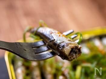 ポン酢&醤油にたっぷりネギと一味で和の面持ちが強いオイルサーディンの完成です。ネギと一味がいいアクセントに。酒の肴はもちろん、ごはんにのせて食べても◎。