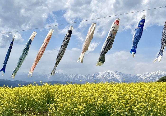 旅行気分グルメを楽しもう。「長野県のソウルフード」レシピ集