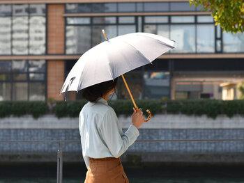 雨の日も晴れやかな気分に。お気に入りの傘を見つけよう