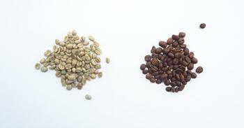コーヒーノキから採れたコーヒー豆は、まだ生豆の状態です。生豆を乾燥させて焙煎を行うと、お馴染みのコーヒー豆ができあがります。焙煎の度合いは8段階に分類されることが多く、焙煎時間が短いものから順にライトロースト・シナモンロースト・ミディアムロースト・ハイロースト・シティロースト・フルシティロースト・フレンチロースト・イタリアンローストに分かれます。