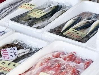 苦手を克服!「魚」をもっと気軽に食べるおすすめレシピ