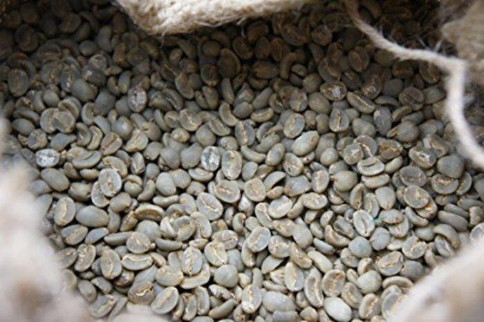 インドネシア マンデリン ビンタンリマ【USプレミアム】コーヒー生豆 グラム販売 (400g)