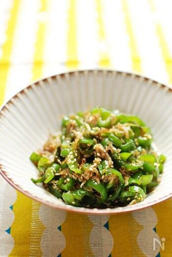 しらすと炒めた栄養満点レシピ。佃煮感覚で白いご飯と一緒に食べると絶品です。