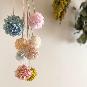 コロンとかわいいフラワーボール。あじさいのプリザーブドフラワーでつくられています。シャンパンカラーやイエローオレンジなど、生花にはない色を楽しめるのもプリザーブドならでは。紐で吊り下げたり、木やガラスの器の入れてみたり、いろいろな飾り方をしてみてくださいね。