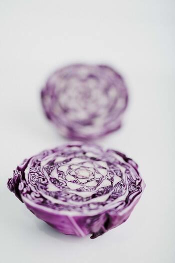 """お弁当の彩に【紫キャベツ】で""""スキマの1品""""レシピ"""