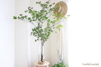 大きめの花瓶に180cmもの長さの「ドウダンツツジ」を大胆に生けています。  花瓶がひっくり返らないように、中にはダイソーのインテリア天然石を入れているそう。長めの丈の枝ものを生けるときに取り入れたいアイデアです。