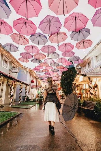 雨の日は発見がいっぱい!傘をさして「ご近所散歩」に出かけてみない?