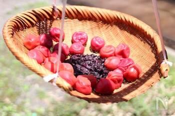 「梅酢」で夏の疲れをさっぱり解消。作り方と美味しいアレンジレシピ