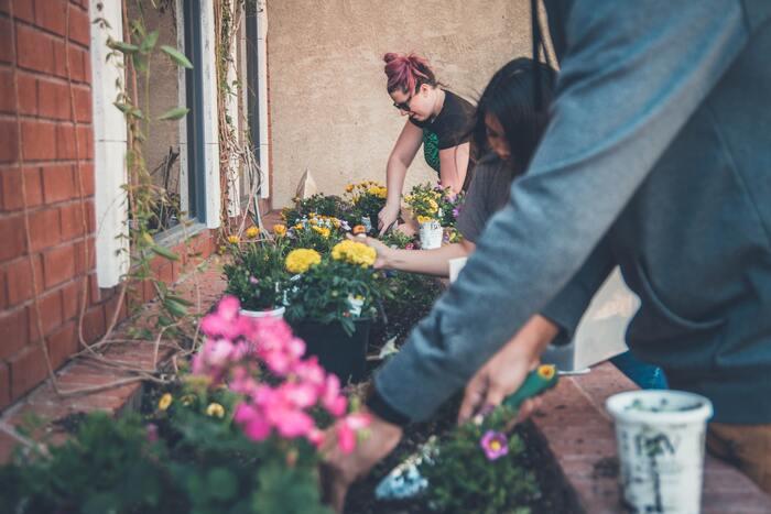 私だけの花壇を。「ベジトラグ」で園芸を楽しもう♪