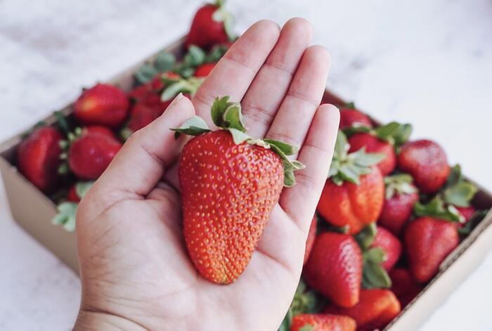 素朴なおやつからおもてなしまで。苺のレシピ26選!