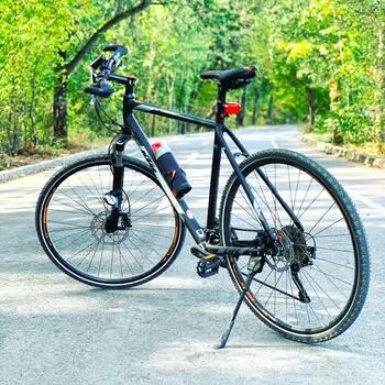 自転車やマウンテンバイクをレンタルできるキャンプ場で、サイクリングを楽しむのもおすすめ。自然のなかを爽快に走り抜けるのは暑い夏でも風が気持ちが良く、キャンプ場の自然豊かなロケーションが見えるのも最高です。2人乗りや3人乗りなど、ユニークな自転車があればぜひ挑戦してみて。家族や友達と一緒に楽しめて、思い出に残ることは間違いなし。