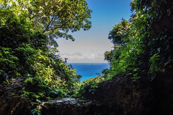 """実はこの""""おかあさん""""、リョウの実の母ではなく父の再婚相手。生まれ育った北海道から、突然沖縄に連れて来られたリョウはどのようにおかあさんと家族になっていったのか、過去の思い出が明かされていきます。ぜひ、沖縄の美しい景色を思い浮かべながらページをめくってみてください。"""
