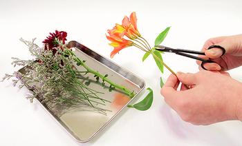"""お花が手元にあれば、それをWOOTANGにプラス。ポイントは、""""葉を切り落とす""""こと。もともとの観葉植物の葉に存在感があるので、しっかりと葉を間引いた方がバランスがとりやすいんですよ。  また、水中に葉や花が浸かると、菌が繁殖しやすくなり水が汚れる原因にもなるため、植物を長持ちさせることにもつながります。"""