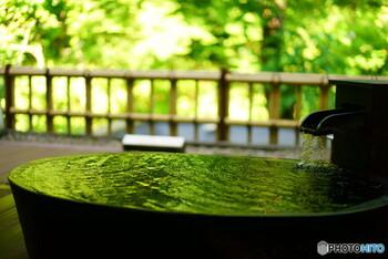 ヴィラタイプは他の建物との距離も保たれていて、プライベート空間が確保されていることも魅力。他の宿泊者の目を気にすることなく、ゆったりと過ごすことができます。温泉つきのヴィラであれば、静かな空間で温泉に浸かり、心も体もリフレッシュできるはず。