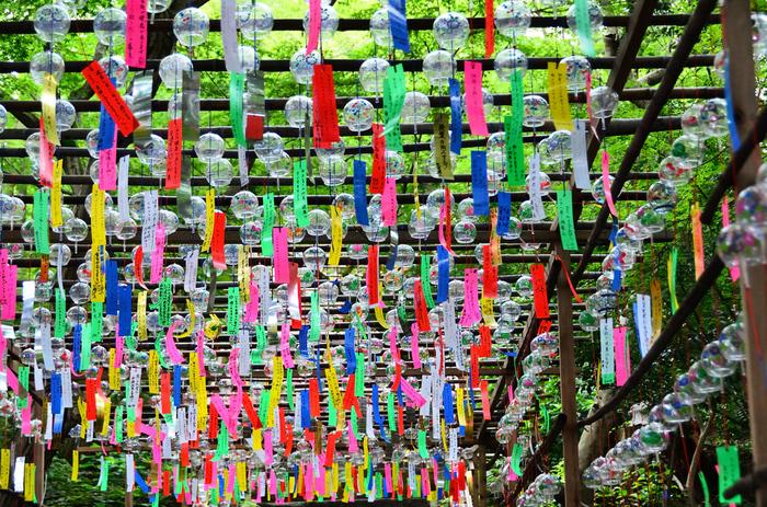 如意輪寺の風鈴は丸いクリアなガラス部分に絵が描かれていて、短冊がカラフルなのが特徴。自然に囲まれていることもあり、風鈴と木々のコントラストも美しいですね。