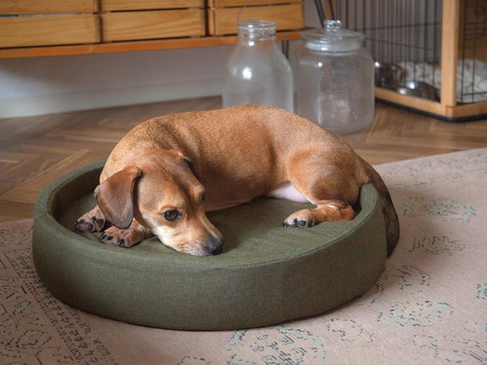ペットも快適に、部屋もおしゃれにを叶えるシリーズの綿100%素材デニム地ペットベッド。丸まって寝る犬や猫の習性に合わせたラウンド型の形状で、3層のウレタン素材は身体にフィットしつつかかる力を分散させるので、寝心地も抜群。デニム特有のさらさらした生地感で、夏も快適に過ごせます。