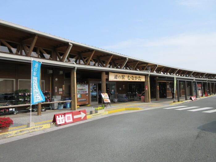 横長の外観が目をひく道の駅「むなかた」。近くには白砂青松100選にも選ばれた「さつき松原」があります。こちらの道の駅は、さまざまな種類の魚介が人気なことで有名。鐘崎や神湊漁港などの魚介を直売しているので、新鮮なものをお得に買うことができますよ。
