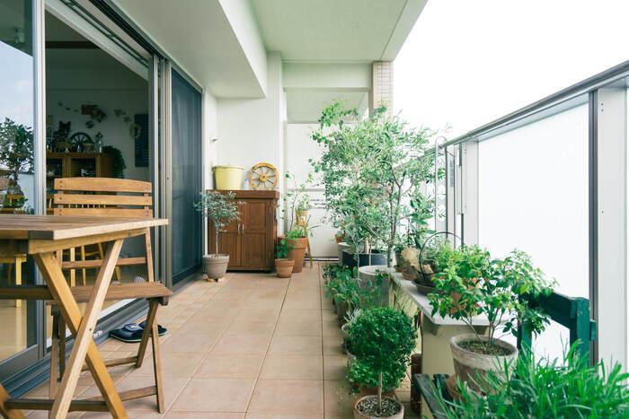 広くてゆったりとしたバルコニー。ユーカリやオリーブなどの大き目の木の鉢植えを中心に、さまざまな植物が。お花ではなくあえて緑の植物を飾ることで統一感が生まれます。