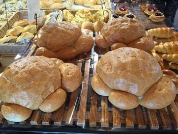 かめの形をしたユニークなフランスパン。ボリューム満点え、お子さん用のお土産にしても喜ばれそうですね。