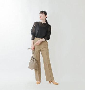黒の長袖シアーブラウスに、ベージュのパンツを合わせたコーディネート。センタープレス入りのパンツで、程よくきちんと感を演出しています。足元にはベージュのヒールパンプスを合わせて、大人かっこいいスタイリングに。