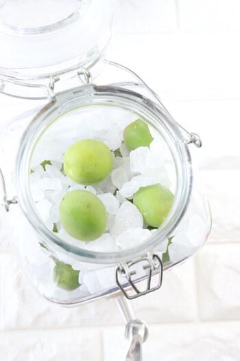 梅シロップの作り方はとっても簡単。まずはキレイに洗って、水気をふき取った梅を用意します。そして梅と同量の氷砂糖と一緒に、ドリンクサーバーで漬け込むだけで、梅シロップが完成♪