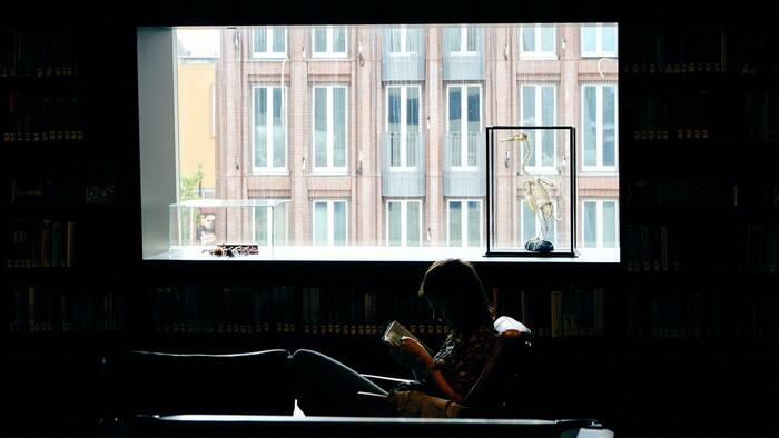 天気にあわせて本を選ぼう*晴れ・雨・雪を感じる美しい9つの小説