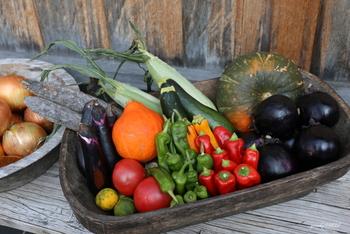「夏野菜」で暑い夏を乗り切ろう!メイン~副菜まで献立作りに役立つレシピ